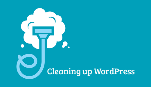 cleaningupwp